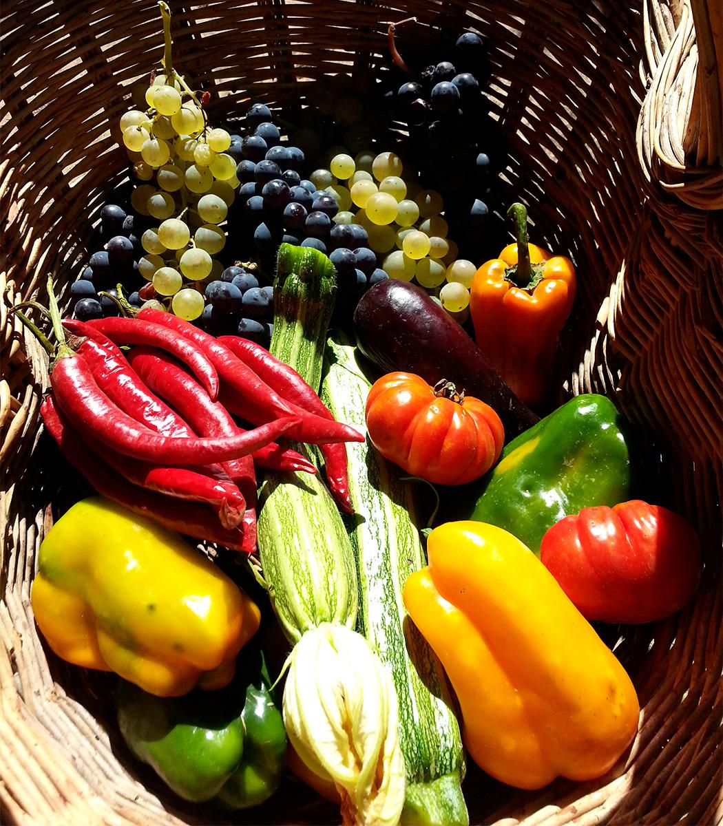 verdura orto poggioborgoni